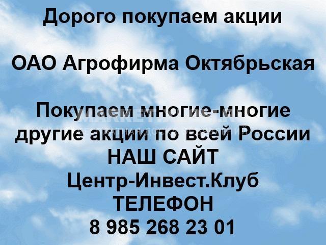 Покупаем акции ОАО Агрофирма Октябрьская - 1/1