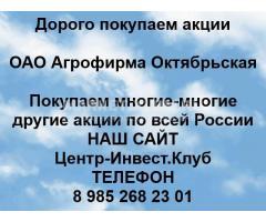 Покупаем акции ОАО Агрофирма Октябрьская
