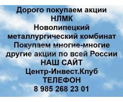 Покупаем акции ПАО НЛМК
